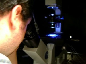 daniel optics