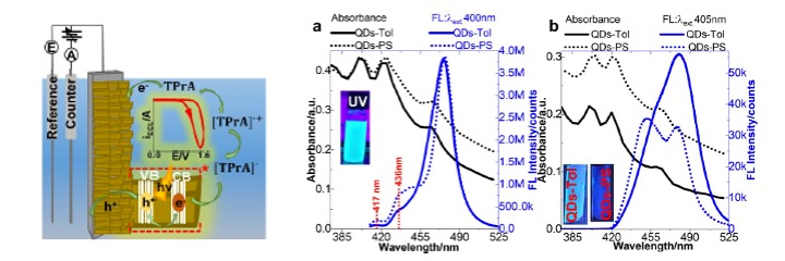 Blue perovskite quantum dots ECL